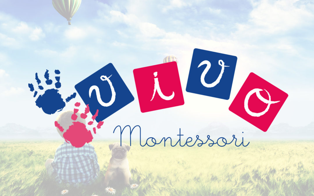 Vivo Montessori…Perchè?