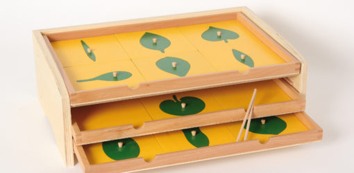 cassettiera botanica materiale biologia vivo montessori