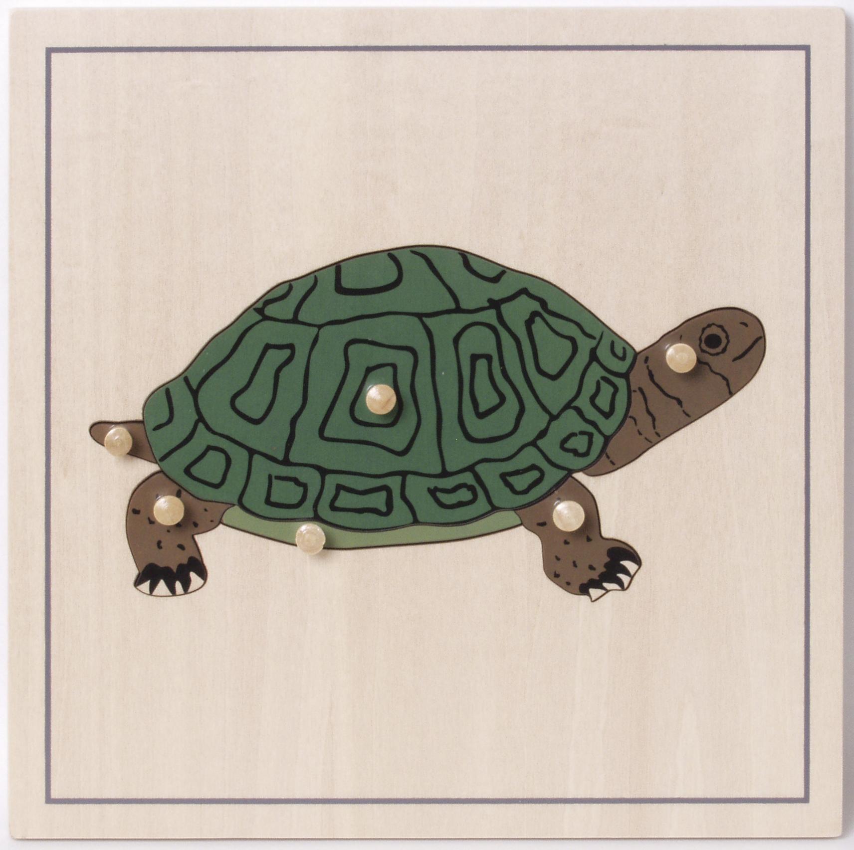incastri animali puzzle tartaruga