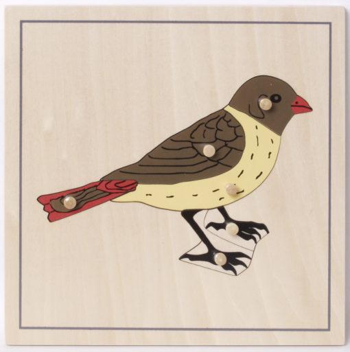 incastri animali montessori uccello